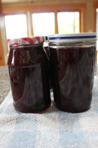 After the jar is full, use a clean wet wash cloth and wipe off the top of the jar and wipe off any spills on the jar. Tighten up the lid and label your jar. Place in refrigerator to cool the jam down. Place in freezer after a day or two days. Enjoy!
