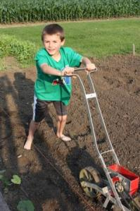 We planted more varieties of lettuce, spinach, flowers, herbs carrots, green beans and sugar snap peas.