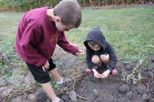 The boys had fun planting the seeds in different areas of the garden and watching them grow. It was fun to share this science with the children in this year's CSA. Seeds can be kept until next year in a paper envelope and planted next spring.