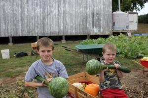 "These are the swan gourds that grew on the fences. Funny how they grew straight (a great example of gravity) vs the ones that grew on the ground curled up.  The two the boys are holding were 20"" and 19""."