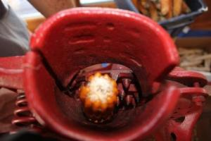 The popcorn is shelled using Steve's Grandpa Gifford's corn sheller.  An ear at a time is placed in the top this is a view as the ear goes into the sheller. We are so blessed to be able to use all of there cool garden and canning gadgets. So thankful they shared them with us to share with the next generation of the family.