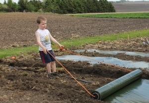 5-24-14 Sam pulling mulch