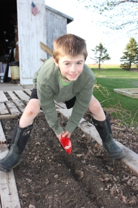 Keith planted radishes, spinach, and lettuce in the pallet gardens.