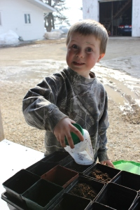 Even with snow on the ground, we started some of our plants at the end of March. Sam is busy filling up the pots before planting.