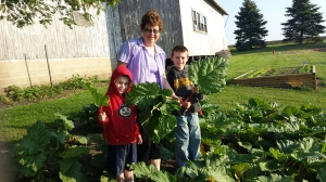 The rhubarb is growing like crazy while the other crops are trying to catch up. The boys were excited to share some with their Grandma. In addition, we do sell rhubarb for $3 per pound. Part of the proceeds go towards disaster relief and Gillette Children's Hospital.