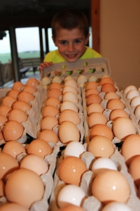 The boys gather, clean and pack the eggs. They hope you enjoy them!