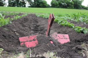 "This blade is attached to the back of the tiller and pushes the soil to the sides thus ""hilling"" the potato rows."
