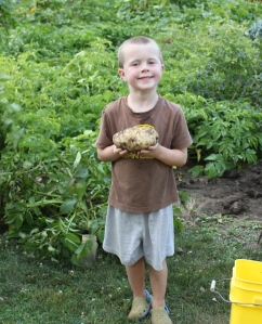 Keith snapped this picture of Sam with a huge Kennebec potato.