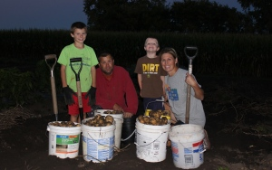 We were happy to finishing digging potatoes this week. It was a beautiful fall evening to do this!
