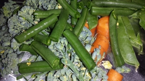 On double layered aluminum foil ( I cross the pieces so the vegetables are wrapped separately in two different pieces of aluminum foil) place: *Variety of vegetables of choice ( I used pea pods, carrots cut into the shape I knew my boys would eat, green and purple beans cut into 1 inch pieces and broccoli cut into bite size pieces) *Drizzle with olive oil *Sprinkle with Romano and Parmesan cheese *Flavor with herbs of choice