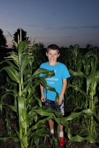 The saying is - corn knee high by the Fourth of July. Well, corn is not only knee high, but it is tasseling. Our sweet corn is tasseling. Some of the field corn is nearly six feet and tasseling. The science that goes into selecting good seed provides the opportunity for the corn to be productive in a variety of weather conditions.