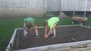 We decided last year that the raised bed garden will be our carrot sampling garden for our shareholders.