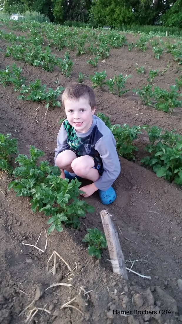 Digging in to Share Science inAgriculture