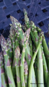 Asparagus from Chute's Farm - delicious!