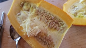 Inside of the summer squash before removing the seeds.